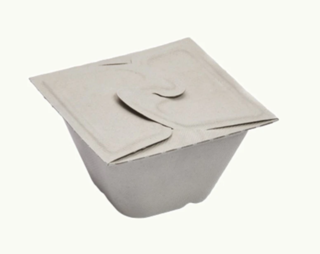 450mL Sugarcane Folding Box - Ecoware