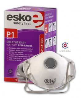BREATHE EASY' P1 Dust Valved mask - Esko